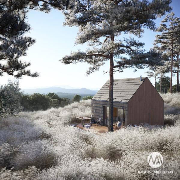 D24, projekty do 35m2, projekt bez pozwolenia, dom na zgłoszenie, dom z drzewem, nowoczesna stodoła