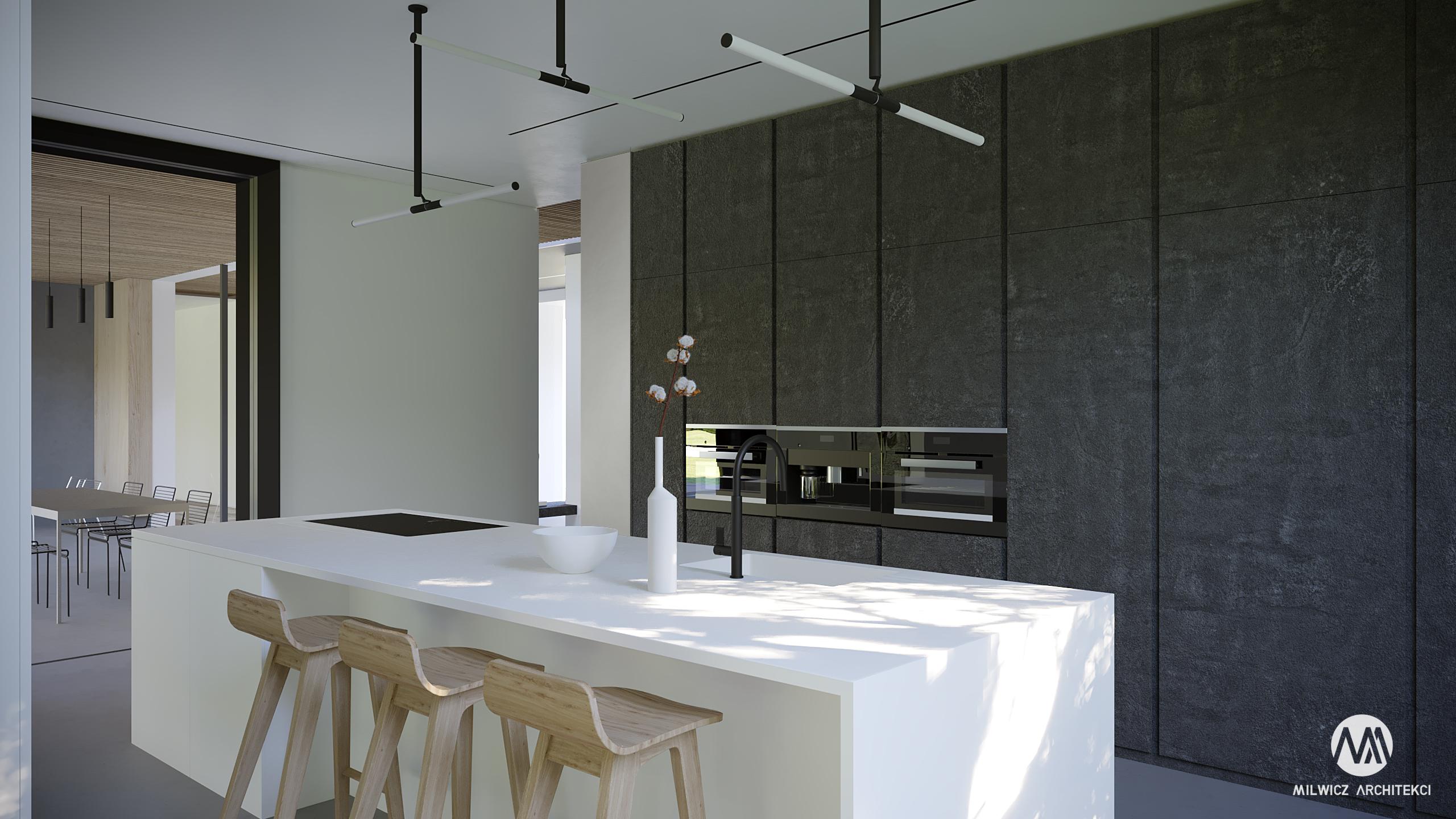 projekt Mielno, projekt indywidualny, minimalizm, beton architektoniczny, duże przeszklenia