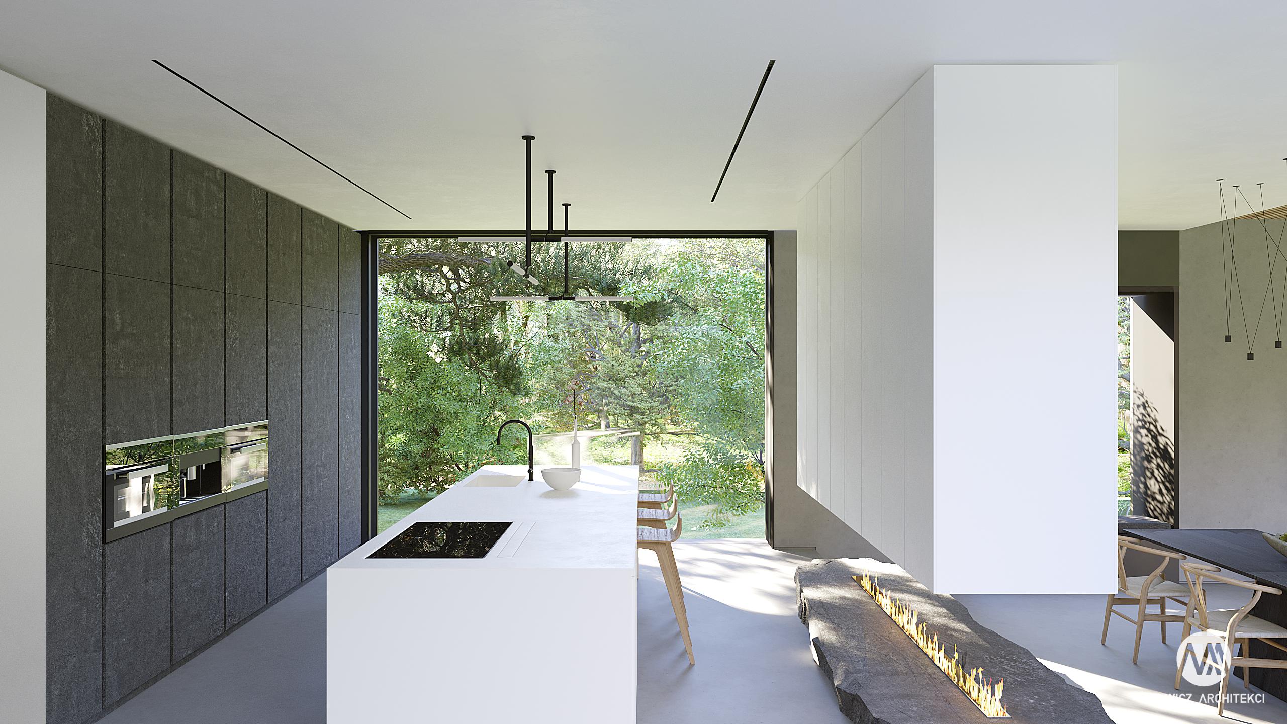 projekt Mielno, projekt indywidualny, nowoczesna architektura, duże przeszklenie, duże okna, kominek