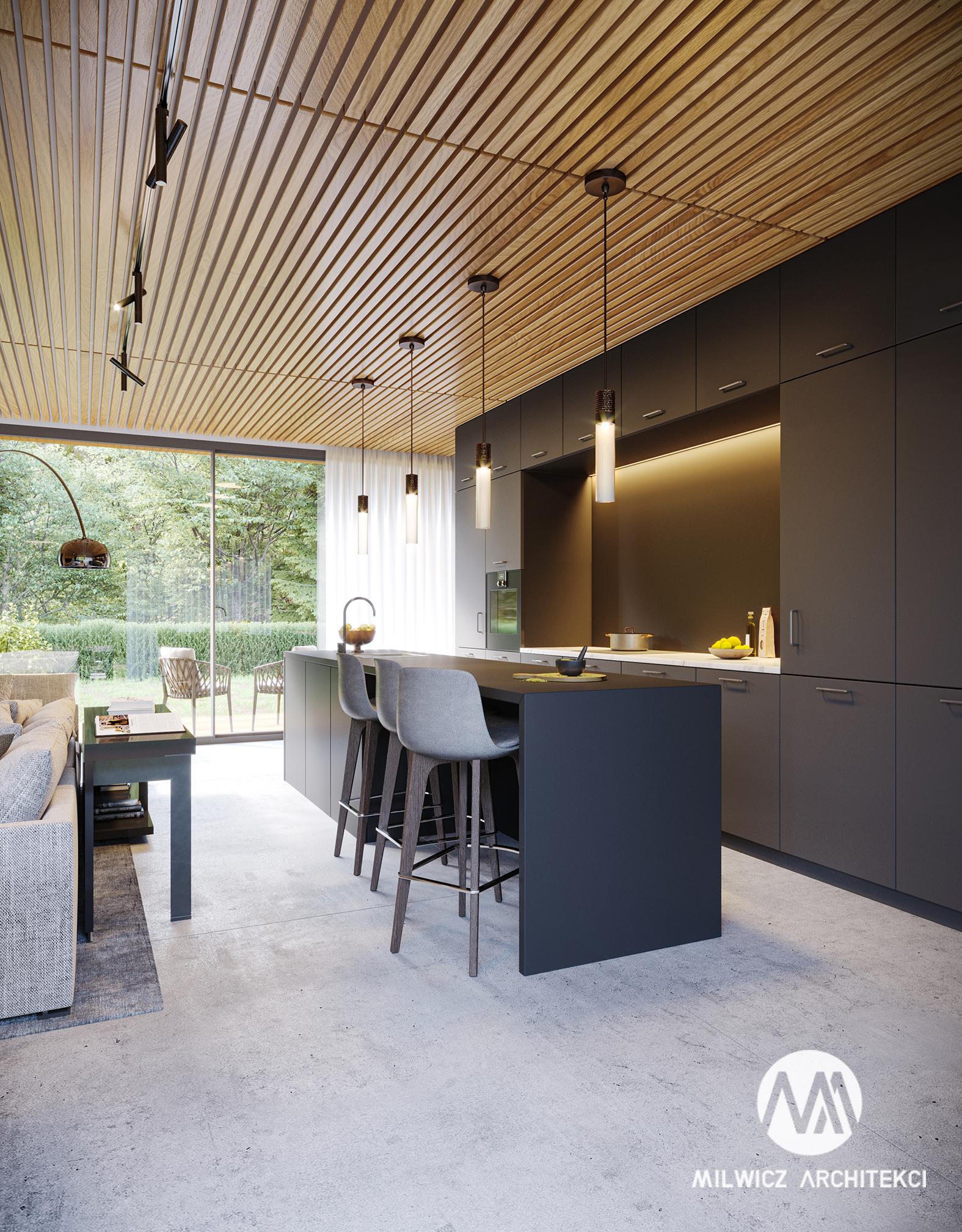 projekt D125v2, projekt wnętrz, minimalizm, nowoczesna kuchnia, wyspa, sufit drewniany