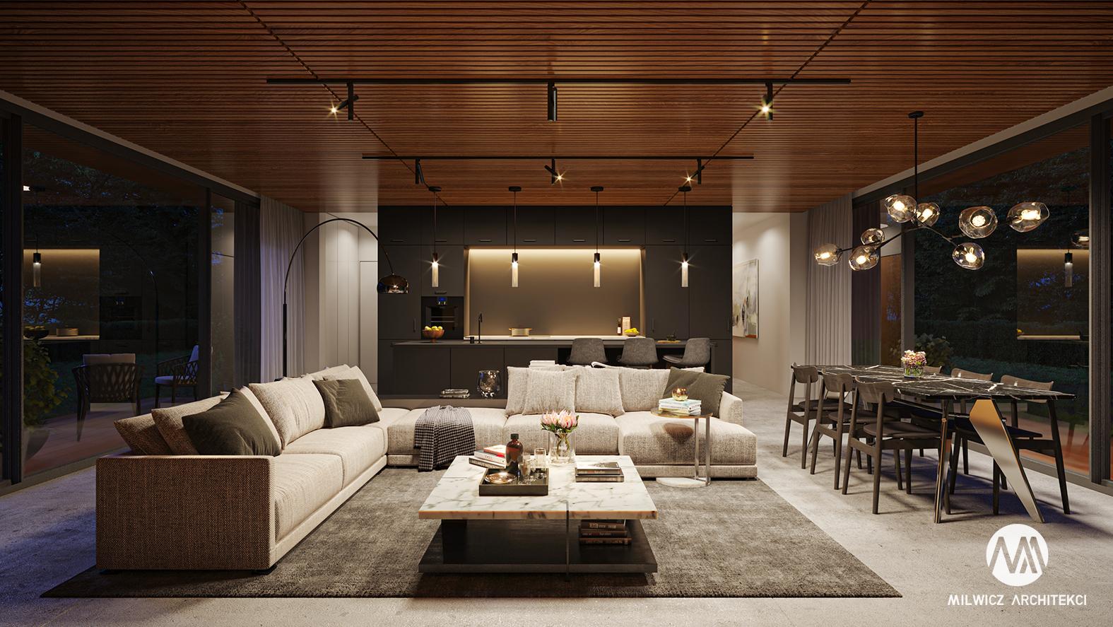 projekt D125v2, projekt wnętrz, minimalizm, nowoczesny salon,