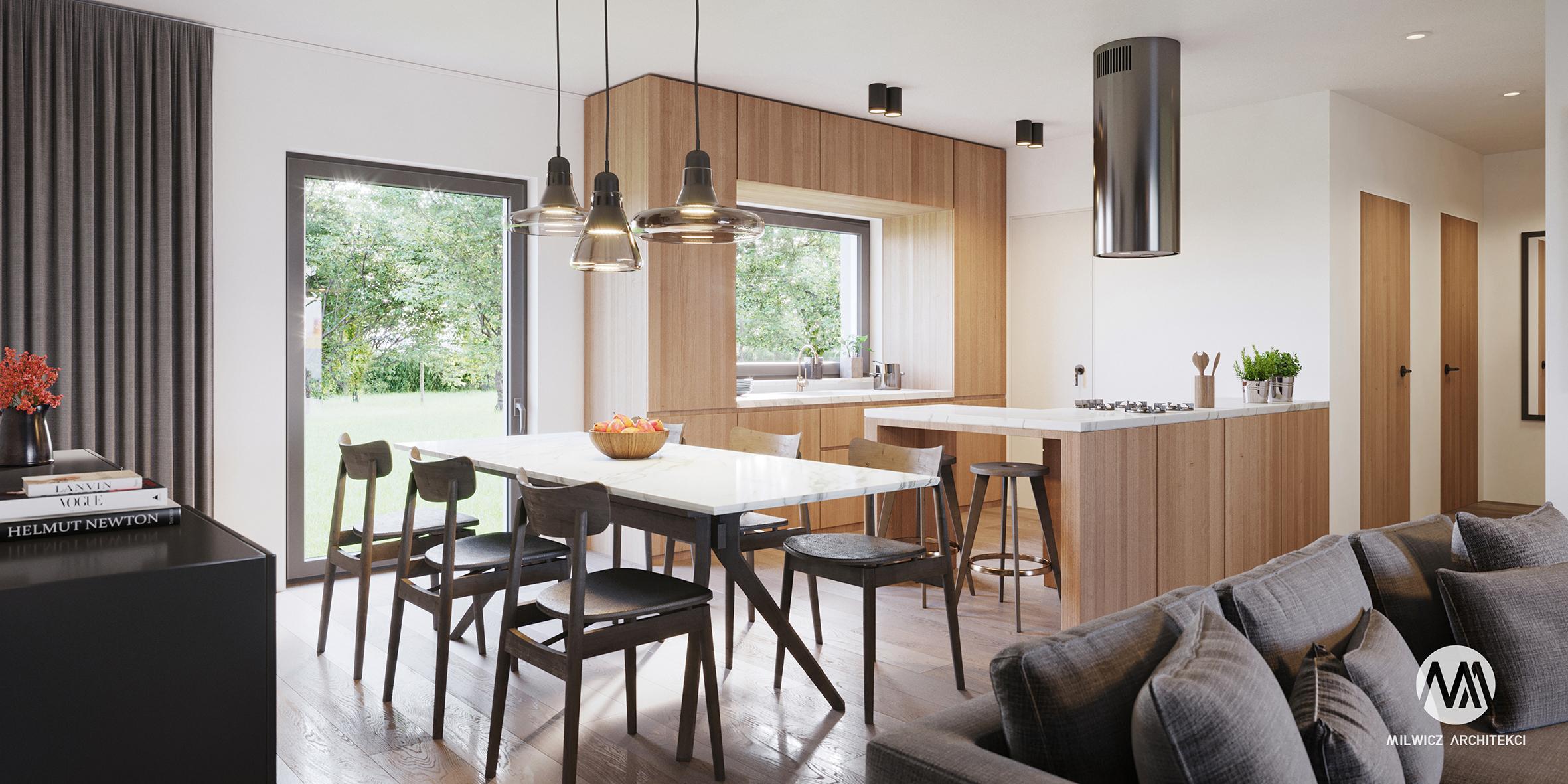 projekt D126, projekt wnętrz, nowoczesne wnętrza, kuchnia